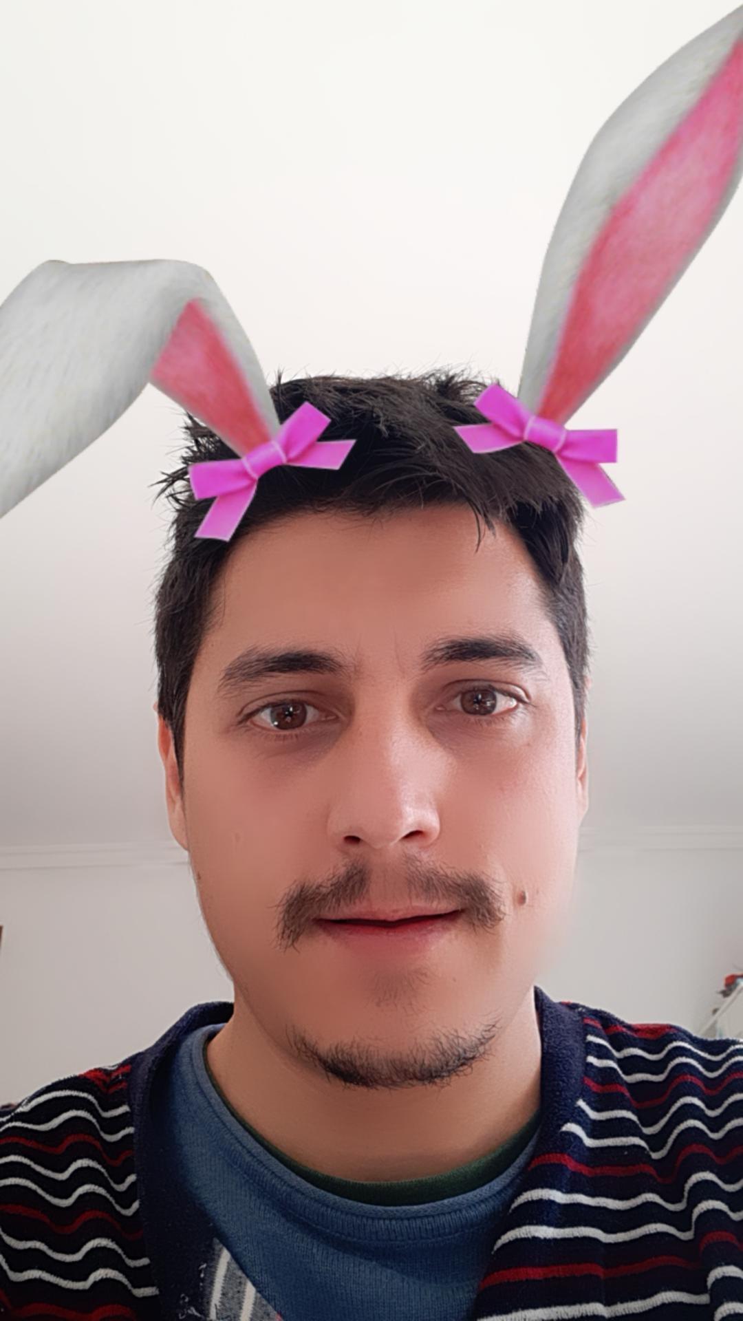 nt_bunny_ears (Bunny Ears)
